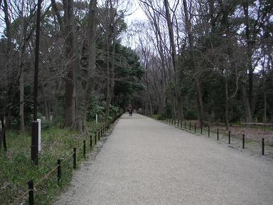 下鴨_糺の森.JPG